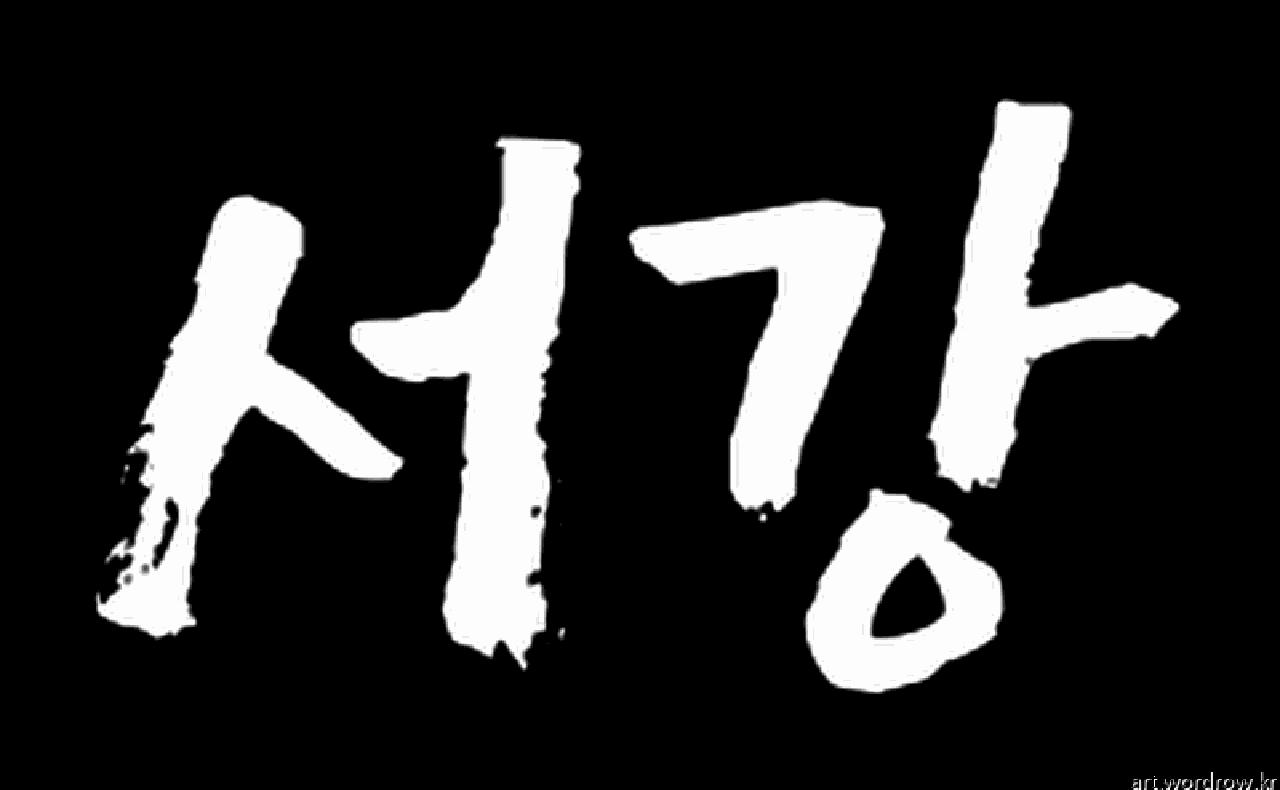[워드 아트]: 서강-30